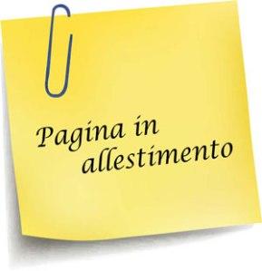 pagina-in-allestimento-1 (2)